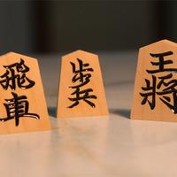 将棋のホリコシの写真