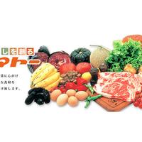 ヤマトー エルト店の写真