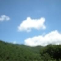 菊池トラック株式会社の写真
