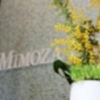 ミモザ法律事務所の写真