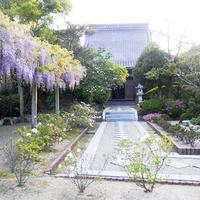 圓城寺の写真