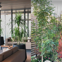 川崎植木の写真
