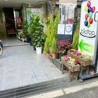 biotop ビオトープ 梅田本店の写真