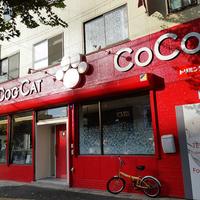 DOGCAT COCO トリミングサロン&ペットホテルの写真