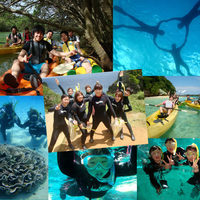 Wave Marine Clubの写真