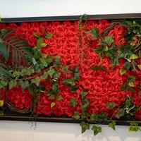 Couronne・de・rosesの写真