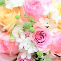 フローリスト 花モトの写真