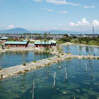 フィッシングパーク高島の泉の写真