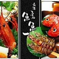 魚料理専門 魚魚一の写真