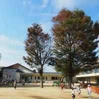 認定こども園 とみせ幼稚園の写真
