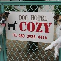 ドッグホテル COZYの写真