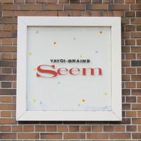 YAYOI~BRAINS Seemの写真