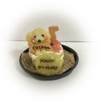 わんこケーキ・サポートgioiaの写真