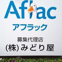 アフラックサービスショップ八戸東鮫店の写真