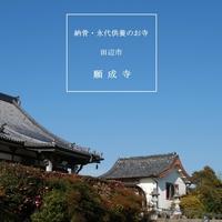 田辺市 願成寺の写真