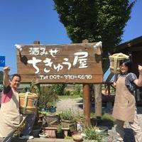 福岡・糸島のおもろい酒屋ちきゅう屋の写真