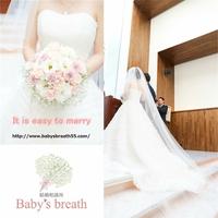 結婚相談所 ベイビーズ・ブレス Baby's breathの写真