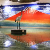 大江戸温泉物語 箕面温泉スパーガーデンの写真