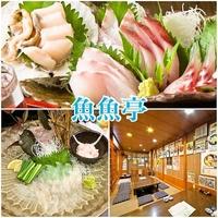 居酒屋 魚魚亭(うおうおてい)の写真