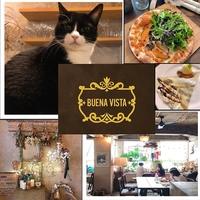 BUENA VISTA(ブエナビスタ)の写真