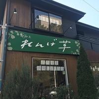 かふぇ れんげ草の写真
