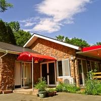 レストラン バジルの葉の写真