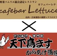 Lettuce(レティス)×天下鳥ます からあげ酒場の写真
