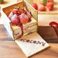 COLONY by EQI 心斎橋店の写真
