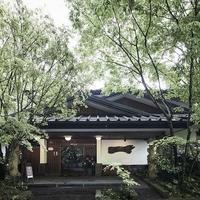 黒川温泉 旅館 奥の湯の写真