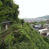 柚子屋旅館 金沢 緑草音の写真
