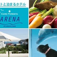 ペットと泊まる宿 CARO FORESTA 三浦海岸ARENAの写真