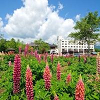 奥利根温泉ホテルサンバードの写真