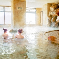 大江戸温泉物語 石和温泉 ホテル新光の写真
