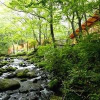 「蔵王の森」がつくる美と健康の温泉宿 ゆと森倶楽部の写真