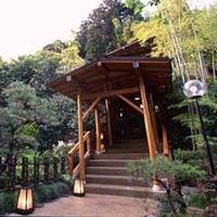 四季を味わう宿 山の茶屋の写真