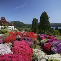 小田急 山のホテルの写真