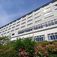 にっしょうかん新館 梅松鶴の写真