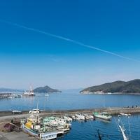 海鮮の宿 まつ浦の写真