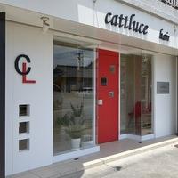 カトルーチェ(cattluce)の写真