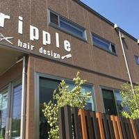 リプル(ripple)の写真