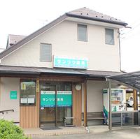 サンリツ薬局戸ヶ崎店の写真