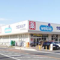 ウエルシア薬局 小川町店の写真