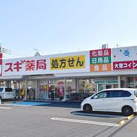 スギ薬局 越谷花田店の写真