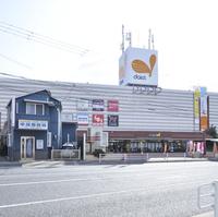 スギ薬局 舞子店の写真