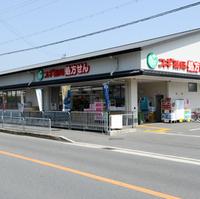 スギ薬局 上桂山田口店の写真