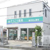 そうごう薬局 紀の川店の写真