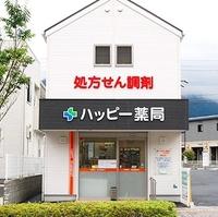 新生堂薬局 ハッピー薬局 直方湯野原店の写真