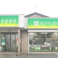 薬樹薬局 庄和の写真