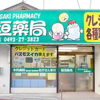 稲垣薬局 東松山店の写真
