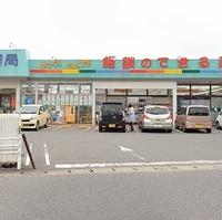 フジタ薬局神野店の写真